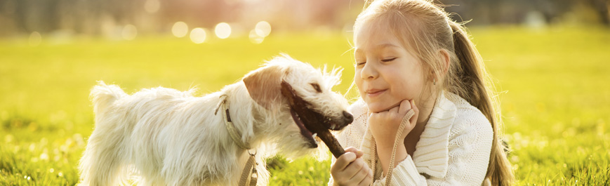 Tiergesundheit & Pflege